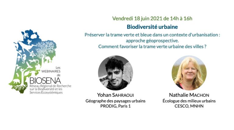 Visionner : Biodiversité urbaine